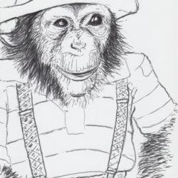 62 Circus Chimp